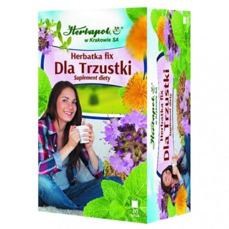 Herbatka Fix - Dla Trzustki, poj. 20 saszetek x 2 g