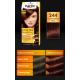 Palette Color Shampoo - szampon koloryzujący bez amoniaku, nr 244 Czekoladowy Brąz