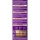 Palette Intensive Color Creme - krem koloryzujący, BW7 Mineralny Ciemny Blond