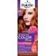 Palette Intensive Color Creme - krem koloryzujący, K17 Intensywna Miedź (Intense Blooms Collection)