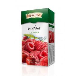 Big-Active - malina i acerola, herbata owocowo-ziołowa, poj. 20 saszetek, masa netto: 45 g
