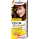 Palette Color Shampoo - szampon koloryzujący bez amoniaku, nr 236 Kasztan