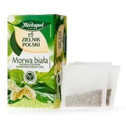 Zielnik Polski - Morwa biała, poj. 20 saszetek x 2 g.